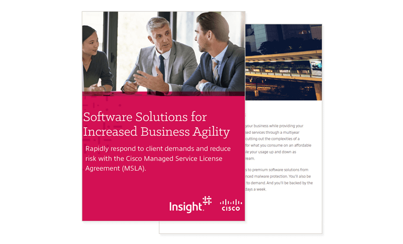 Cover image of Software Solutions for Increased Business Agility