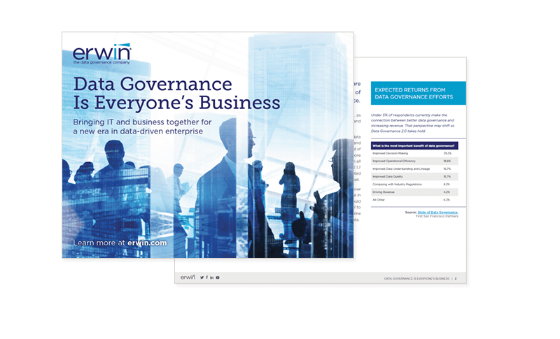 Data Governance Is Everyone's Business ebook cover page
