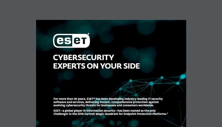 Cybersecurity Experts on Your Side  thumbnail