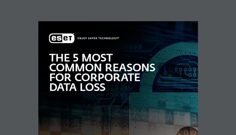 The 5 Most Common Causes of Data Loss Brief thumbnail