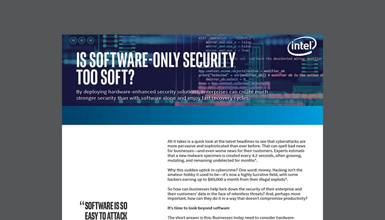 Is Software-Only Security Too Soft? cover